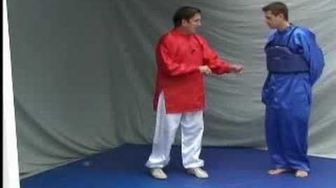 Tai Chi Fighting Applications - Single Whip