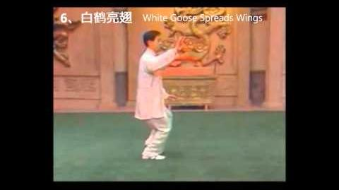 Chen Style Tai Chi 18 Form with Chinese and English Step Names