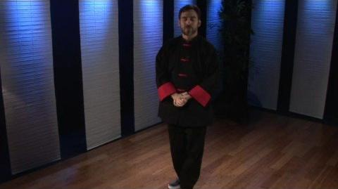 Tai Chi Moves Tai Chi Moves Fan Through the Back