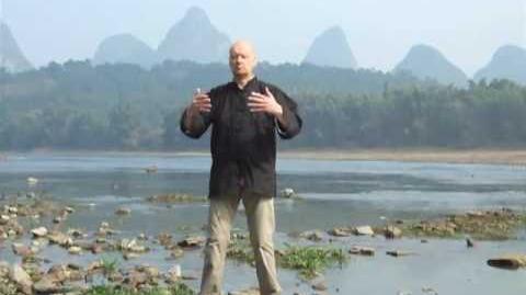 Zhan Zhuang Qi Gong - Standing Meditation