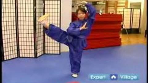 Beginner Wushu Techniques How to Do the Wushu Side Kick