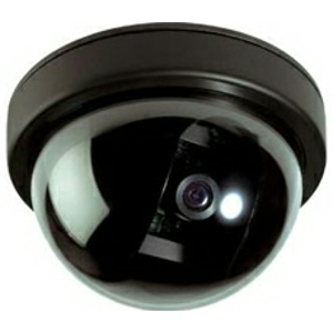 File:Icu310 d indoor dome camera.jpg