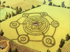 Crazy Crop Circles