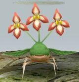 Plant MFL