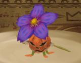 PumpkiPlant MMR