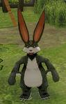 Hare Black MFL