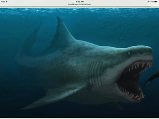 A scary Megalodon