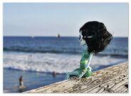 Diorama - Scarah at the beach