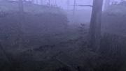 MHFU-Old Swamp Screenshot 002