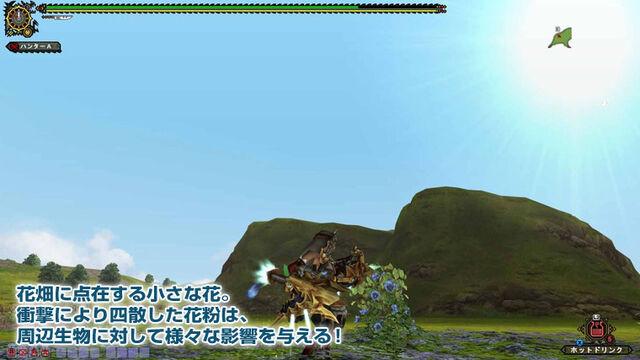 File:MHFGG-Flower Field Screenshot 018.jpg