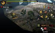 MH4U-Konchu Screenshot 011