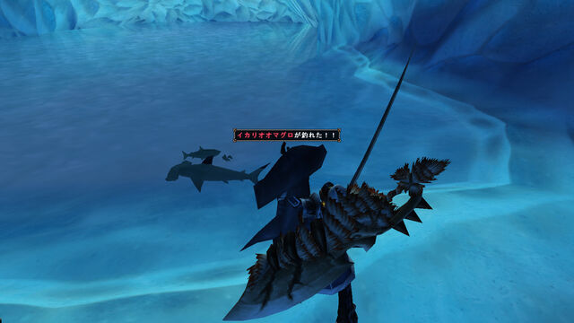 File:Hammerhead sharks.jpg