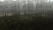 MHFU-Old Jungle Screenshot 041