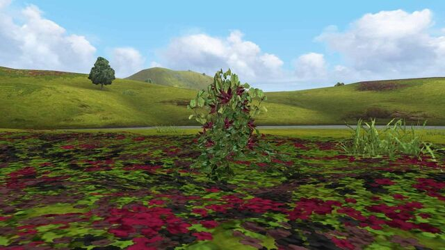 File:MHFGG-Flower Field Screenshot 006.jpg