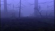 MHF1-Swamp Screenshot 007