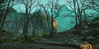 Dark Veil Forest