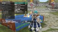 MHFO Mezeporta Square General Quest Lady Occasion Quests Submenu Breakdown