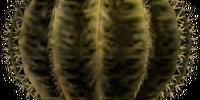 Cactus Creamer G