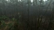 MHFU-Old Jungle Screenshot 039
