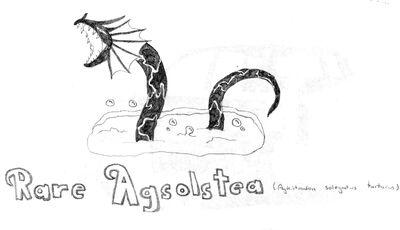 Rare Agsolstea
