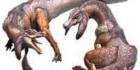 Common Jaggi