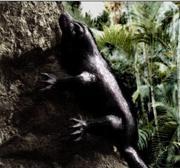 180px-Giant lizard (1)