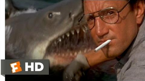You're Gonna Need a Bigger Boat - Jaws (4 10) Movie CLIP (1975) HD