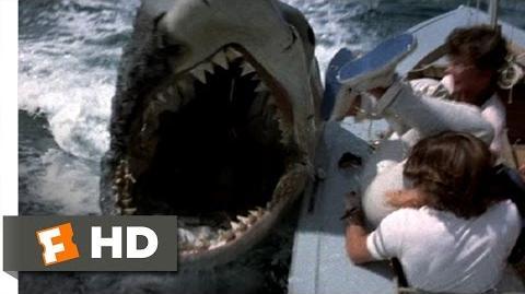 Jaws 2 (7 9) Movie CLIP - Shark vs. Sailboats (1978) HD
