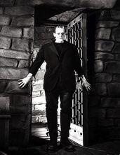 Frankenstein!!!!!!!