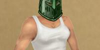 Forestguard Helm