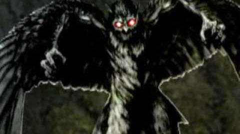 The Story of The Owl Man