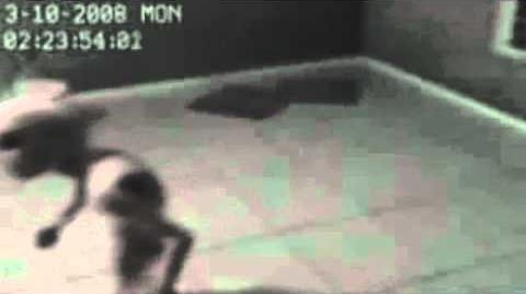 Alien Grey Captured in Brazil Amazing Video