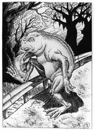 For cryptid wiki 4