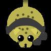 Wintercheetah