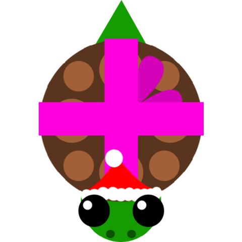File:Winter turtle.png
