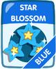 Blue Star Blossom
