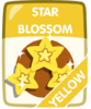 Yellow Star Blossom