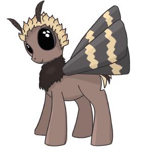 Dec moth Talvi