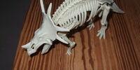 Bone dino