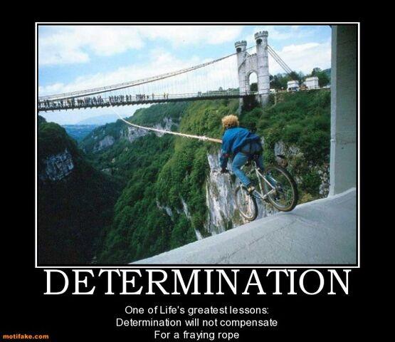 File:Determination-determination-demotivational-demotivational-posters-1300834594.jpg