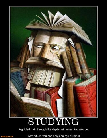 File:Studying-demotivation-studying-demotivational-posters-1333761227.jpg