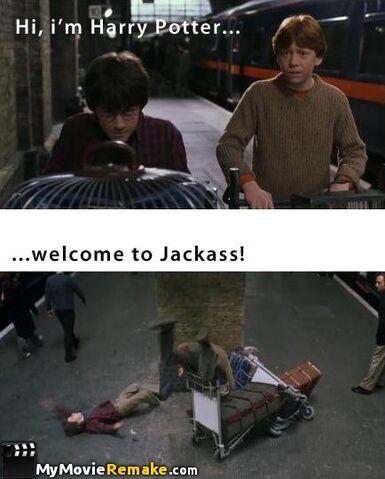 File:Harry Jackass.jpg