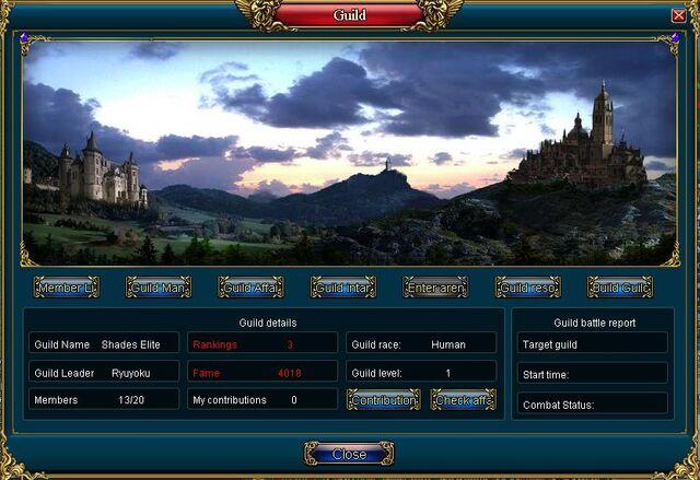 File:Guild Interface.jpg