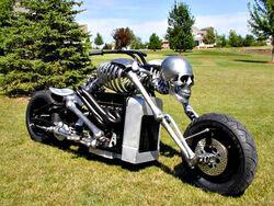 EndoskeletonBike-926