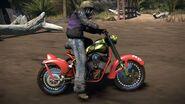 021 Mohawk Roadhog