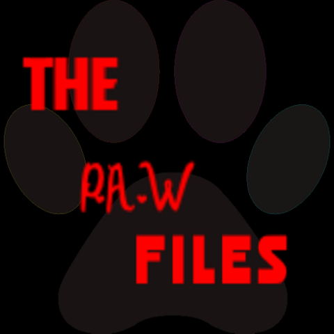 File:The P.A.W Files Logo-0.png