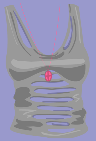 File:RetiredClothing-VIPSkinTight.png