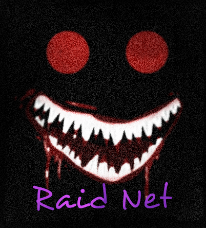 File:Raid Net.jpeg