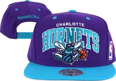 File:Snapback Charlotte Hornets hat.jpg