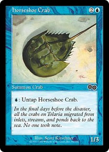 Horseshoe Crab UZ